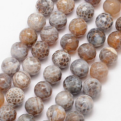 Natural Fire Agate Bead Strands, Round, Grade A, Faceted, Dyed & Heated, Tan, 10mm, Hole: 1mm; about 37pcs/strand, 15inches