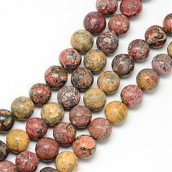 """Brins de perles de jaspe en peau de léopard naturel, rond, 10~11mm, trou: 1mm; environ 39 pcs/chapelet, 15.7""""(G-R345-10mm-30)"""