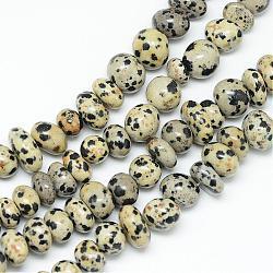 "Zèbre naturel brins jaspe de perles, puce, 9~12x6~11mm, trou: 1mm; environ 45~55 pcs/chapelet, 15.7""(G-R358-08)"