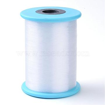Fishing Thread Nylon Wire, White, 0.6mm, about 492.12 yards(450m)/roll(NWIR-R038-0.6mm-02)