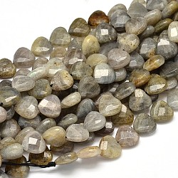 Natural Labradorite Heart Bead Strands, Faceted, 10x10x5mm, Hole: 1mm; about 40pcs/strand, 15.74