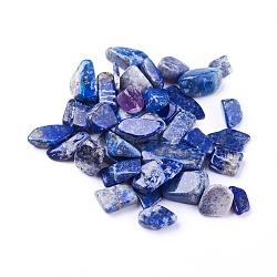 lapis-lazuli naturelles perles, non percé / pas de trou, puces, 6~24x5~12x3~9 mm, environ 100 g /sachet (G-I221-18)
