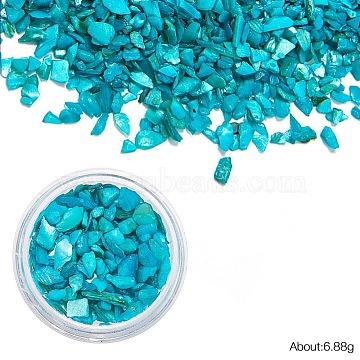MediumTurquoise Chip Shell