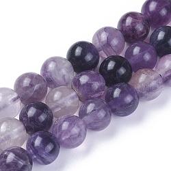 """Chapelets de perles en fluorite naturel, rond, 8mm, trou: 1mm; environ 48 pcs/chapelet, 15.1"""" (38.5 cm)(G-F642-06-B)"""