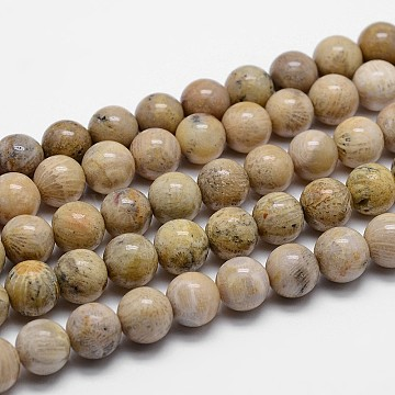 Natural Fossil Coral Beads Strands, Grade A, Round, 10mm, Hole: 1mm, about 38pcs/strands, 15.7 inches(G-I131-21-10mm)