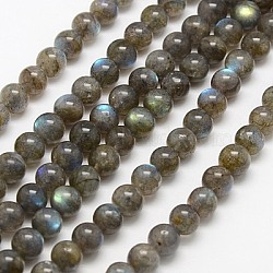 Natural Labradorite Beads Strands, Grade AB, Round, SlateGray, 7mm, Hole: 1mm