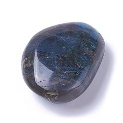 Perles naturelles de labradorite, pas de trous / non percés, nuggets, 51~92x47~61x15~28mm(G-E523-06A)