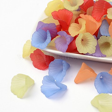 Mixed Transparent Acrylic Flower Beads, Frosted, Dyed, about 20mm wide, 20mm long, 2mm thick, hole:1.5mm(X-PL551M)