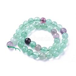 """Chapelets de perles en fluorite naturel, facette, rond, 10mm, trou: 1.2mm; environ 39 pcs/chapelet, 15.15''~15.7"""" (38.5~40 cm)(G-P430-17-D)"""