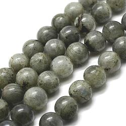 Natural Labradorite Bead Strands, Round, 4mm, Hole: 1mm; about 91pcs/strand, 15''