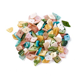Shell Beads, Dyed, Nuggets, Mixed Color, 6.2~15.2x4.3~7.3x0.4~3.8mm, Hole: 1mm(X-BSHE-I008-13)
