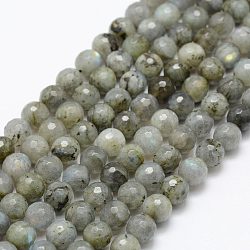 Natural Labradorite Beads Strands, Round, Faceted, 8mm, Hole: 1mm; about 49pcs/strand, 15.1''(38.5cm)