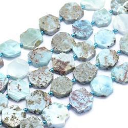 "Chapelets de perles en larimar naturel, nuggets, 13~16x13~15x4~5mm, trou: 1mm; environ 23 pcs/chapelet, 15.7"" (40 cm)(G-O170-05)"