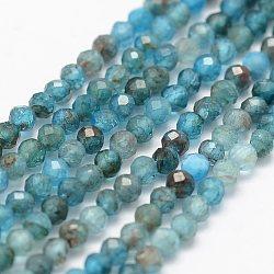 Chapelets de perles en apatite naturelle, facette, rond, 2mm, trou: 0.5mm; environ 175 pcs/chapelet, 14.9'' (38 cm)(G-K185-02)
