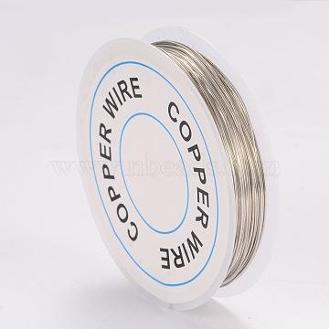 0.6mm Silver Copper Wire
