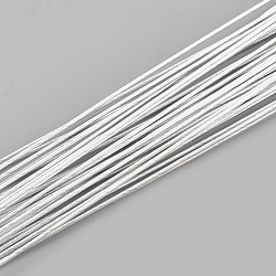 Iron Wire, WhiteSmoke, 24 Gauge, 0.5mm; 60cm/strand; 50strand/bag(X-MW-S002-02F-0.5mm)