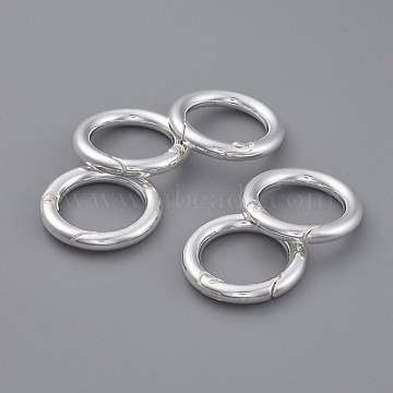 Silver Alloy Clasps