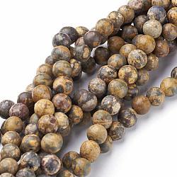 """Pierres précieuses naturelles peau de léopard jaspe perles rondes, 3mm, trou: 0.8mm; environ 126 pcs/chapelet, 16""""(G-A130-3mm-24)"""